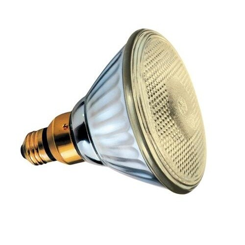 GE 20945 Outdoor Incandescent Bug Light Bulb, 85 Watts, 120 Volt