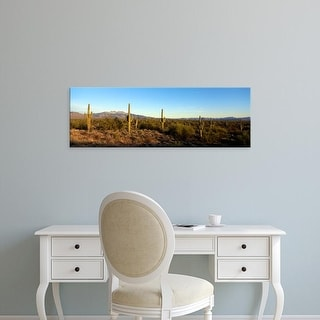 Easy Art Prints Panoramic Image 'Saguaro cacti in a desert, Four Peaks, Phoenix, Maricopa County, Arizona' Canvas Art