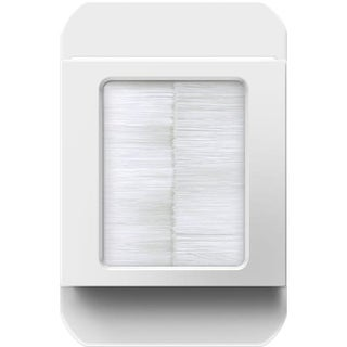 Legrand ACBRSTPW1 In-Wall Cable Access Port