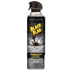 Black Flag HG-11036 Wasp and Hornet Aerosol Spray, 14 Oz