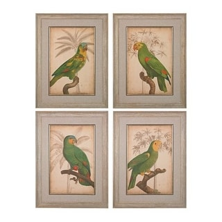 "Sterling Industries 151-018/S4 33"" x 26"" Art Prints - Parrot and Palm I - IV - Set of Four - N/A"