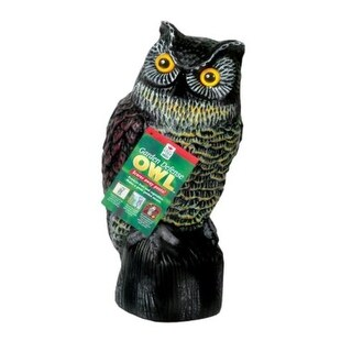 Easy Gardener 8001 Garden Defence Owl|https://ak1.ostkcdn.com/images/products/is/images/direct/433859afff988448f8df62cbd9271df81dc86a43/Easy-Gardener-8001-Garden-Defence-Owl.jpg?_ostk_perf_=percv&impolicy=medium