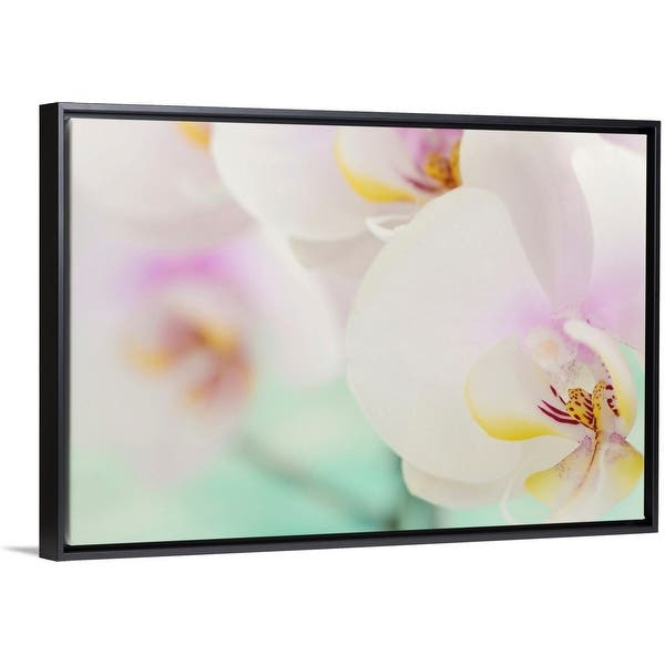 Shop Orchids In Bloom Close Up Black Float Frame Canvas Art