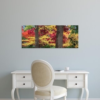 Easy Art Prints Panoramic Images's 'Trees in a forest during autumn, Oregon, USA' Premium Canvas Art