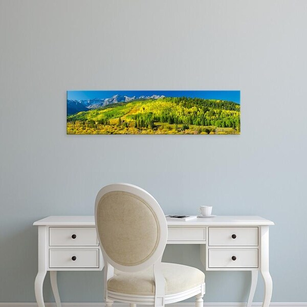 Easy Art Prints Panoramic Images's 'Aspen trees on mountains, Uncompahgre National Forest, Colorado, USA' Canvas Art
