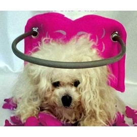 Muffin's Halo for Blind Dogs Angel Wing Pink