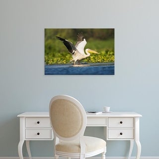 Easy Art Prints Martin Zwick's 'Great White Pelican' Premium Canvas Art