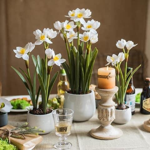 RusticReach Real Touch Daffodil Flower Bonsai