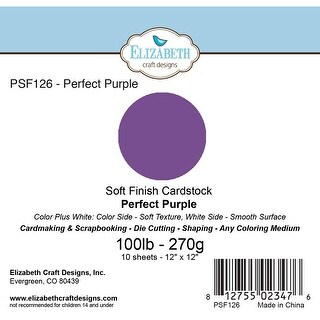 "Soft Finish Cardstock 12""X12"" 10/Pkg-Perfect Purple"