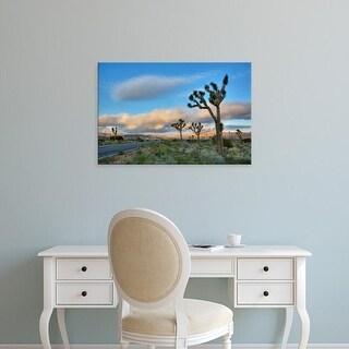 Easy Art Prints Jamie & Judy Wild's 'Joshua Tree Np I' Premium Canvas Art