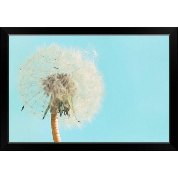 """""""Close up of dandelion flower on sky blue background"""" Black Framed Print"""