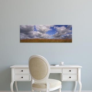 Easy Art Prints Panoramic Images's 'Clouds over a field, Iowa, USA' Premium Canvas Art