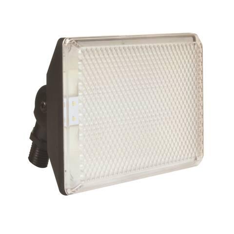 AFX Flood Lights 1-light Black LED Outdoor Floodlight, Clear Prismatic Polycarbonate Shade