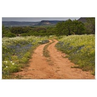 """Wildflowers at dirt road in Texas Hill Country"" Poster Print"