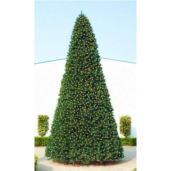 20' Giant Pre-Lit Everest Fir Commercial Christmas Tree - Warm White LED Lights - green