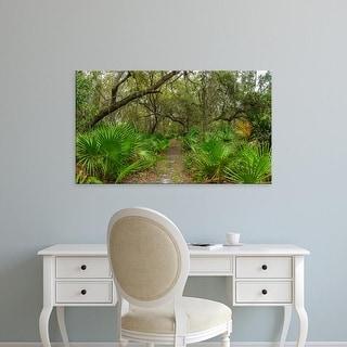 Easy Art Prints Panoramic Images's 'Trees and plants, Oscar Scherer State Park, Nokomis, Sarasota, Florida' Canvas Art
