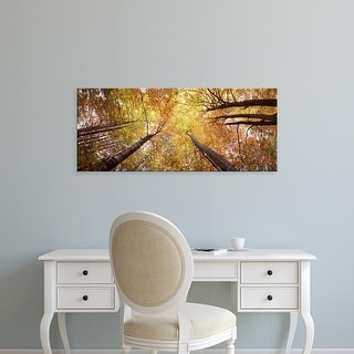 Easy Art Prints Panoramic Images's 'Low angle view of trees, Bavaria, Germany' Premium Canvas Art
