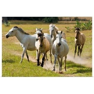 """Wild horses"" Poster Print"