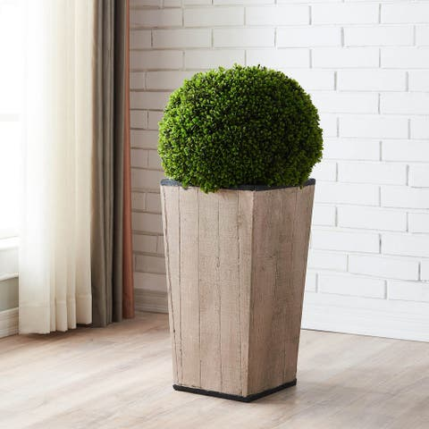 Grand Boxwood Topiary