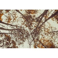 Yellow Forest Trees Photograph Wall Art Canvas