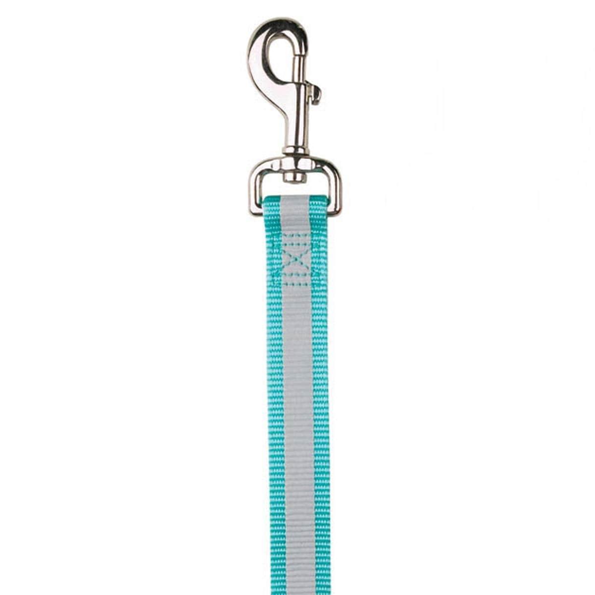 Guardian Gear Reflective Dog Leash - Mint Blue (Mint Blue - 6? Length x 1 Width)