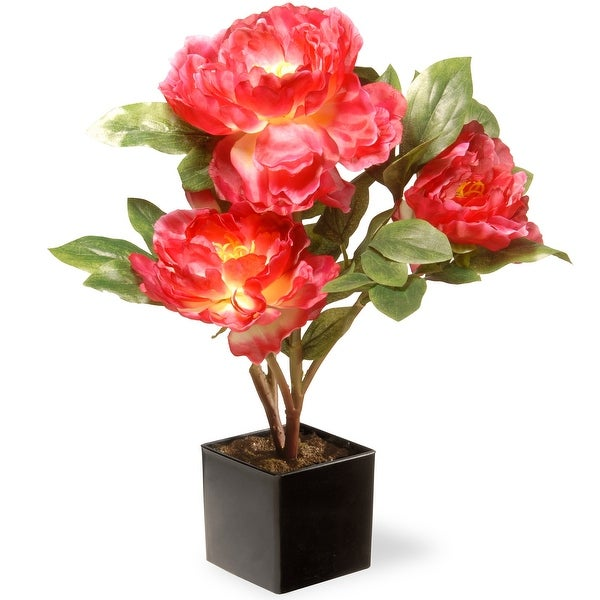 "15"" Potted Artificial Fuchsia Peony Flower - N/A"