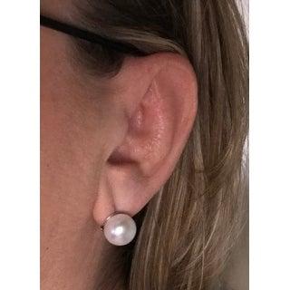 Sterling Silver Freshwater Pearl Omega Clip Stud Earrings (12-13mm)