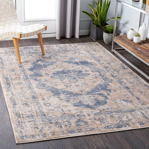 Purle Distressed Traditional Area Rug