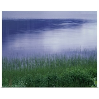"""Grass along a river, Norway"" Poster Print"