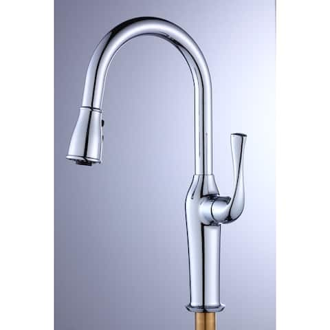 TiramisuBest Stainless Stell Kitchen Faucet with Pull Down Sprayer