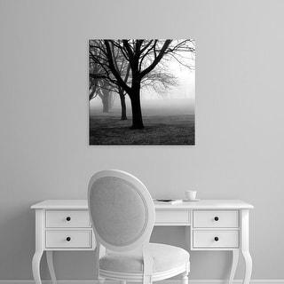 Easy Art Prints PhotoINC Studio's 'Trees' Premium Canvas Art
