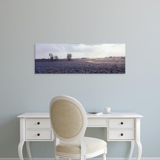 Easy Art Prints Panoramic Images's 'USA, Illinois, farm, winter' Premium Canvas Art
