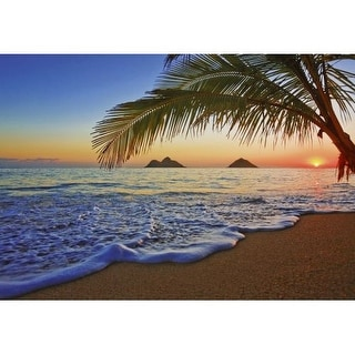Brewster DM955 Pacific Sunrise Wall Mural