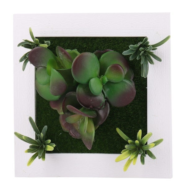 Home Table DIY Decor Plastic Wall Hanging Artificial Succulent Plant Frame