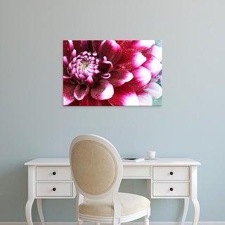 Easy Art Prints Darrell Gulin's 'Dahlia Flower With The Petals Radiating Outward' Premium Canvas Art