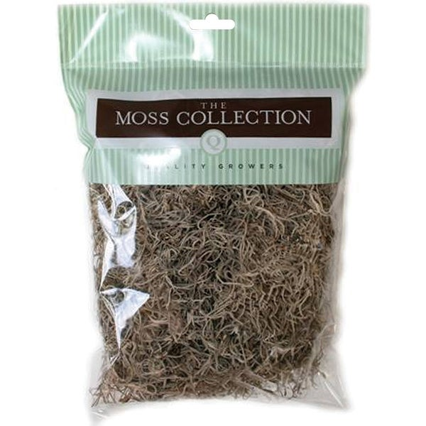 Preserved Spanish Moss 108.5 Cubic Inches-Natural