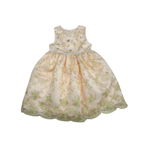 Shop Little Girls Champagne Sparkle Embroidery Tea-Length Flower Girl Dress 4T - Free Shipping On Orders Over $45 - Overstock - 27902114