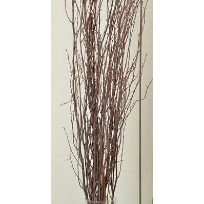 Decorative Natural brown Birch Branches 5 stems per bunch, 3-4 feet tall -- Single Bunch - Natural brown