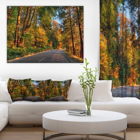 Designart 'Road through Lit-up Fall Forest' Landscape Wall Art Print Canvas