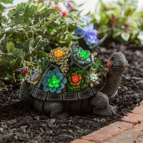 Solar Resin Succulent Turtle