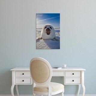 Easy Art Prints Keren Su's 'Harp Seal Pup On Ice' Premium Canvas Art