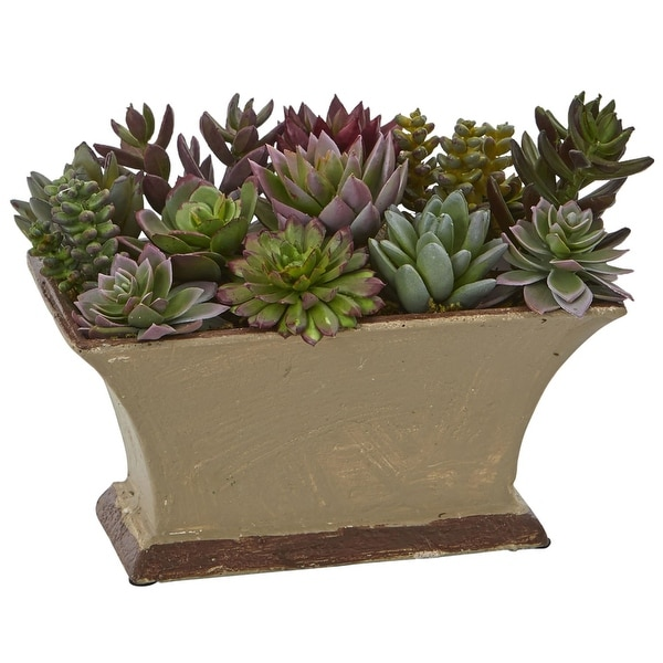 Nearly Natural Mixed Succulent Artificial Plant in Vase