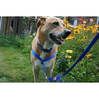 The Walk Your Dog With Love Sportso Doggo Harness