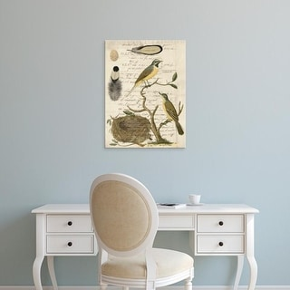 Easy Art Prints Vision Studio's 'Avian Journal II' Premium Canvas Art