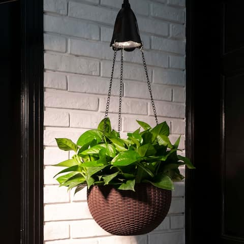 Baimuru 30-inch Height Solar Lighted Hanging Plastic Planter by Havenside Home