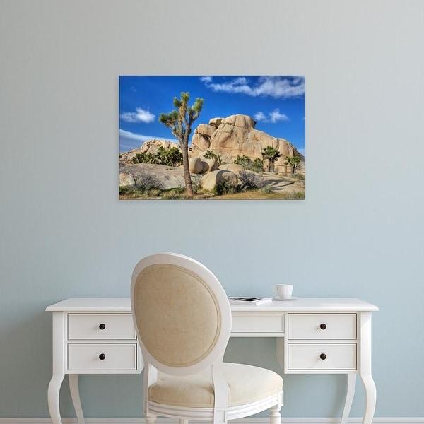 Easy Art Prints Jamie & Judy Wild's 'Granite Rock Formation And Joshua Trees' Premium Canvas Art