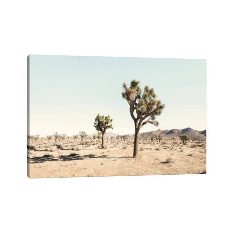"iCanvas ""Joshua Tree Desert"" by Sisi & Seb Canvas Print"