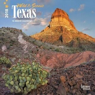 2018 Wild and Scenic Texas Mini Wall Calendar