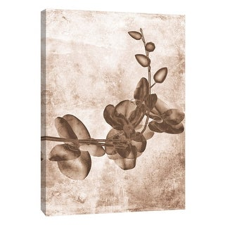 "PTM Images 9-105798  PTM Canvas Collection 10"" x 8"" - ""Sepia Flower Inversions 7"" Giclee Flowers Art Print on Canvas"