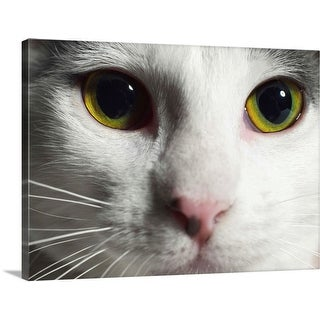"""""""Close-up of a cat's face"""" Canvas Wall Art"""
